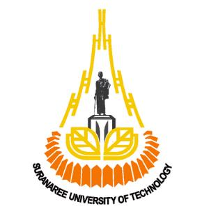 มหาวิทยาลัยเทคโนโลยีสุรนารี 300X300